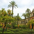 Alcazar of Seville — Stock Photo #4073173