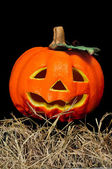 Halloween jack-o'-lantern — Stock Photo