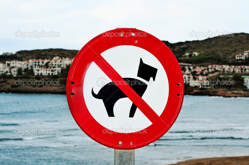 No dogs allowed traffic sign on a beach — Stock Photo #4211602