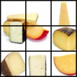 Cheese collage - Stock Photo