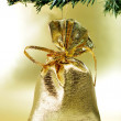Kerst ornament — Stockfoto #4361568