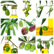 Olive oil collage — Stock Photo #4361700