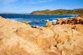 View of Binimela beach in Menorca — Stock Photo
