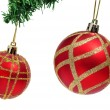 A pair of red and golden christmas balls hanging on a christmas tree - Stockfoto