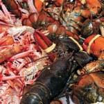 Seafood — Stock Photo #4478928