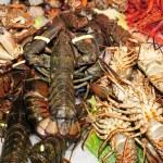 Seafood — Stock Photo #4478946