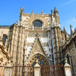 Lateral entrance to the Seville Cathedral — Stock Photo