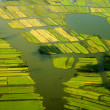 Aerial view of a landscape in Netherlands - Stock Photo