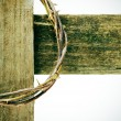 Stock Photo: Crown of thorns and cross