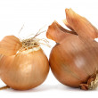 A pair of onions — Stock Photo