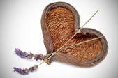Heart-shaped shell — Stock Photo