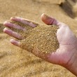 Sand in the hand — Stockfoto
