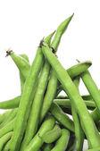Broad bean pods — Stock Photo