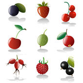 Berries icon set — Stock Vector