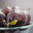 Stock Photo: Plums close-up