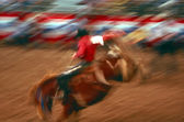 Rodeo in arena — Stock Photo