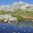 Stock Photo: Alpine paradise