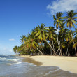 Tropical beach — Stock Photo #4668030