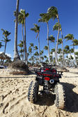 Quad and palms — Stock Photo