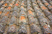 Tile grunge old stripped roof artistic background — Stock Photo