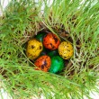 Royalty-Free Stock Photo: Easter colorful eggs on grass