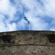 Scottish flag — Stock Photo #4406003