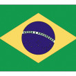 National flag of Brazil — Stock Photo #4413971