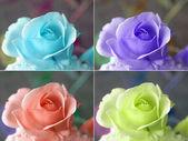 Popart 玫瑰 — 图库照片