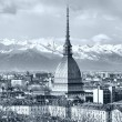 Royalty-Free Stock Photo: Turin view