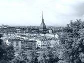 Turin görünümü — Stok fotoğraf