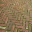 Brick sidewalk pavement — Stock Photo #5035148