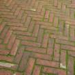 Brick sidewalk pavement — Stock Photo