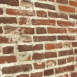 Old wall — Stock Photo #5286706