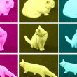 Pop Art cat — Stock Photo #5363462