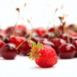 Single strawberry on background of cherries — Stock Photo