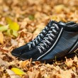 Stock Photo: Pair of black female sport shoes in autumn foliage
