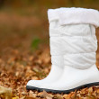 Pair of white female boots in the autumn foliage — Stock Photo