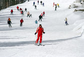 Female skier skiing down a wide track for beginners — Stock Photo