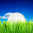 Golf ball and green grass — Stock Photo