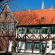 Stock Photo: Timbered house