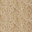 Seamless pattern(texture) of woollen carpet — Stock Photo