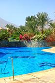 Swimming pool in the beautiful green garden — Stock Photo