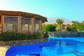 Zwembad in de prachtige groene tuin — Stockfoto