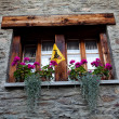 Stok fotoğraf: Window with potted flowers