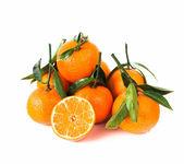 Mandarine kavramı — Stok fotoğraf