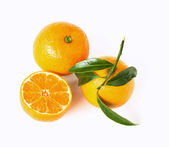 Mandarine concept — Stock Photo