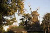 Molino de viento en elmhurst — Foto de Stock
