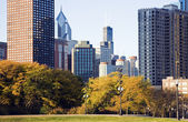 Fall in Chicago — Stock Photo
