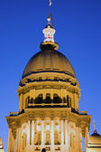 Springfield, Illinois - State Capitol — Photo