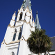 Постер, плакат: Cathedral in Savannah